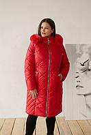 Женская удлиненная плащевая куртка батальных размеров с капюшоном и опушкой tez3115322, фото 1