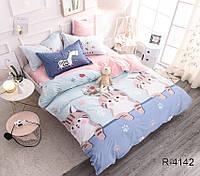 Комплект постельного белья двуспальный хлопок 100% Ранфорс TAG R4142