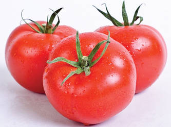 Індетермінантний томат Сільвіана F1/Sylviana, Enza Zaden, 500 насінин