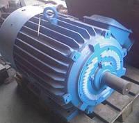 Электродвигатель 90 кВт 1000 об АИР280M6, АИР 280 M6, АД280M6, 5А280M6, 4АМ280M6, 5АИ280M6, 4АМУ280M6, А280M6