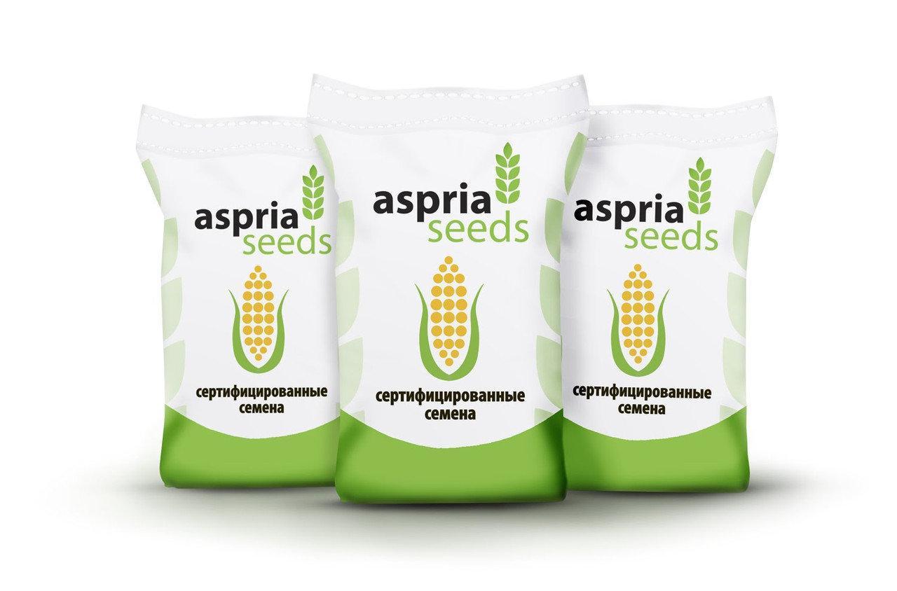 Насіння соняшника Aspria Seeds AC34111