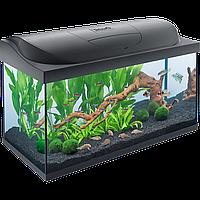 Аквариум Tetra Starter Line LED для рыбок, черный 105 л (710808)