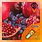 Ароматизатор Capella Blueberry Pomegranate with Stevia| Черника, гранат и стевия, фото 2