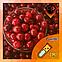 Ароматизатор Capella Cranberry  Клюква, фото 2