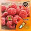 Ароматизатор Capella Raspberry v.2  Малина, фото 2