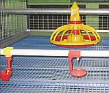 Щелевой пластиковый пол для птичников, решетчатый пластиковый пол для бройлеров 1000*1000 мм, фото 6