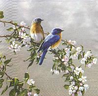 Коллекционная салфетка для декупажа Парочка птиц на цветущей ветке 5084