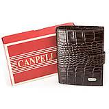 Кошелек мужской CANPELLINI 17040 кожаный Коричневый, Коричневый, фото 6