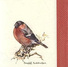Коллекционная салфетка для декупажа Птица на ветке 5088