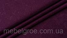 violet_19.jpg