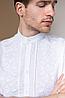 Мужская вышиванка с коротким рукавом Тристан, фото 4