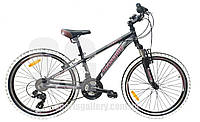 Велосипед Mascotte Phoenix M 24