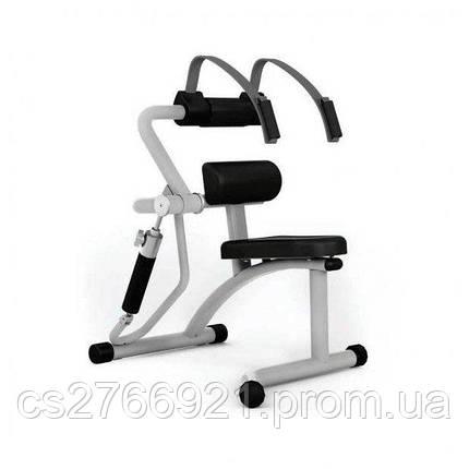 Тренажер для мышц брюшного пресса/разгиб. спины Pulsefitness 604, фото 2