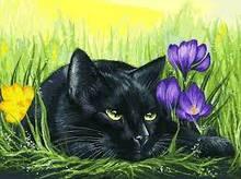 Картина по номерам Белоснежка «Кот и крокусы»т113-AS