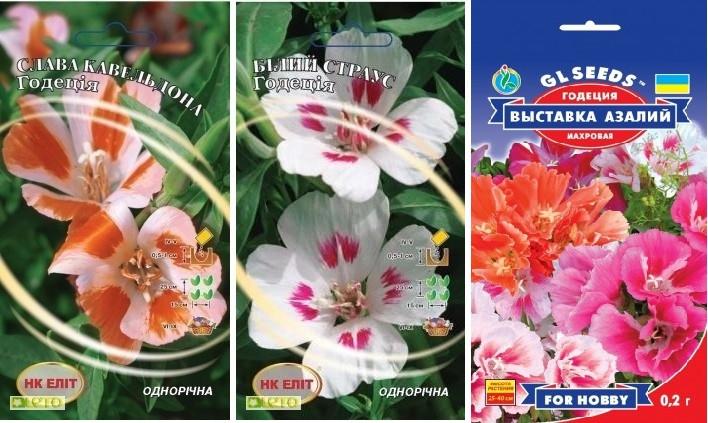 Семена   Годеция Белый Страус 0.3 г  ,Слава Кевельдона 0.3 г ,  Выставка азалий, 0.2 г