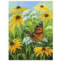 """Картина за номерами """"Квіткова галявина"""" 30х40 см (153-AS)"""