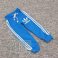 Демисезонные весна осень р 98 1,5-2 года детские спортивные штаны для на мальчика Adidas ДВУХНИТЬ 3469 Голубой