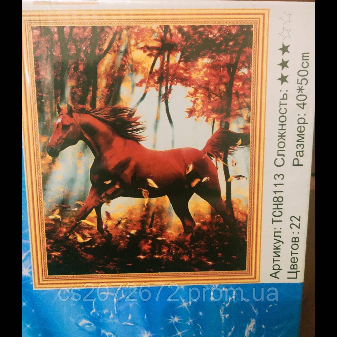 Алмазная Мозаика 40x50  коричневый конь