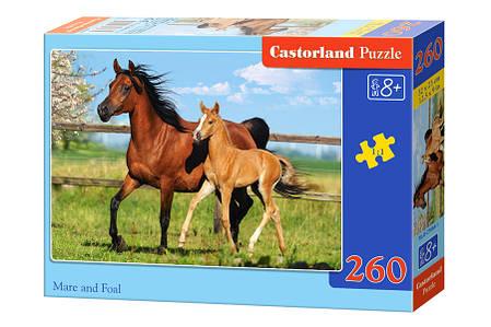 Пазлы Лошадь и жеребенок на 260 элементов, фото 2
