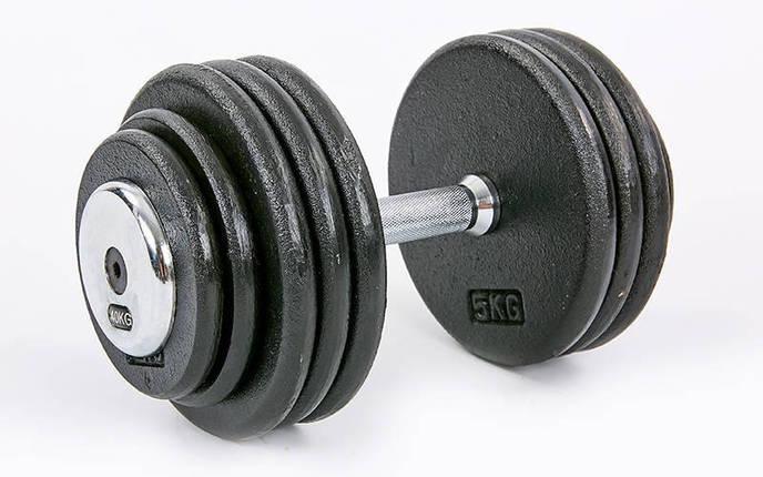 Гантель цельная профессиональная стальная RECORD (1шт) TA-7231-40 40кг (сталь, сталь хромированная, вес 40кг), фото 2