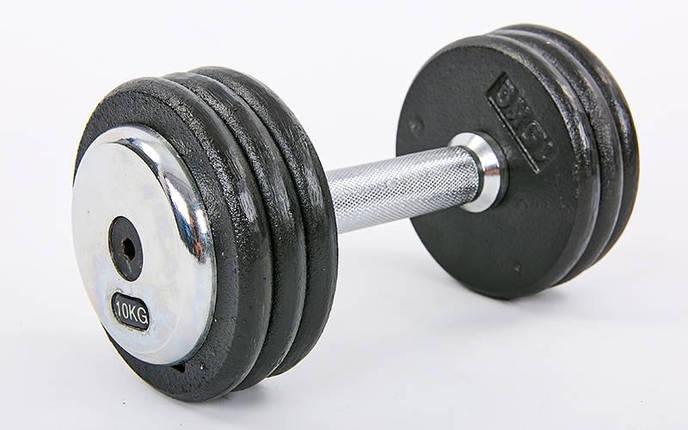 Гантель цельная профессиональная стальная RECORD (1шт) TA-7231-10 10кг (сталь, сталь хромированная, вес 10кг), фото 2