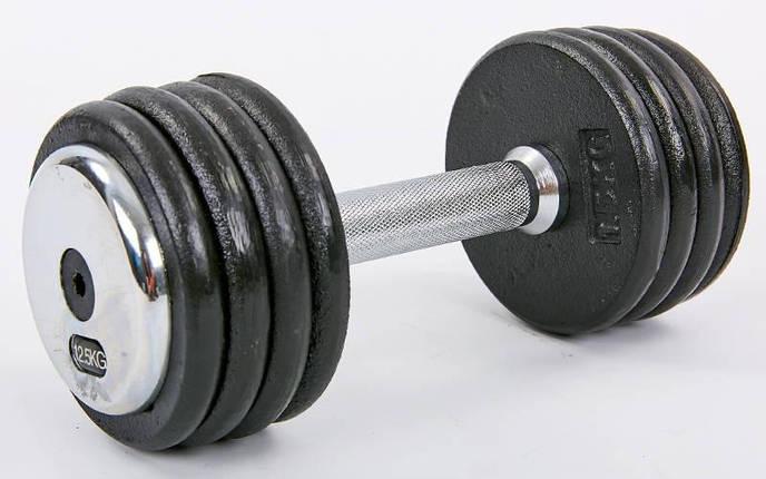 Гантель цельная профессиональная стальная RECORD (1шт) TA-7231-12_5 12,5кг (сталь, сталь хромированная, вес 12,5кг), фото 2