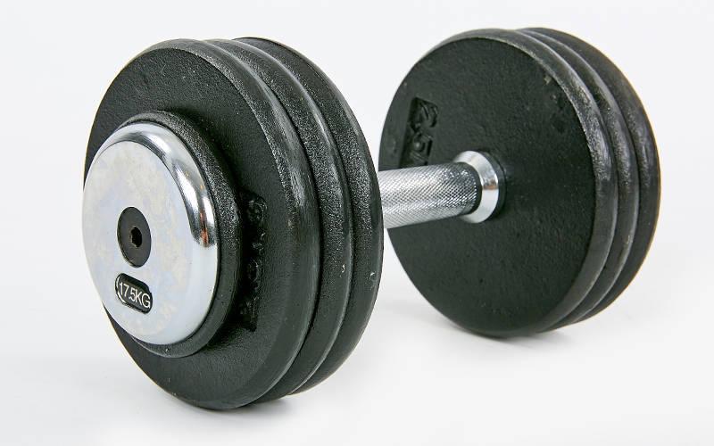 Гантель цельная профессиональная стальная RECORD (1шт) TA-7231-17_5 17,5кг (сталь, сталь хромированная, вес 17,5кг)