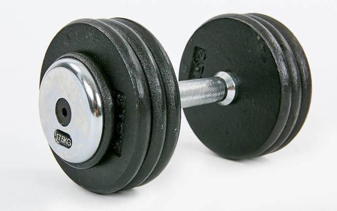 Гантель цельная профессиональная стальная RECORD (1шт) TA-7231-17_5 17,5кг (сталь, сталь хромированная, вес 17,5кг), фото 2