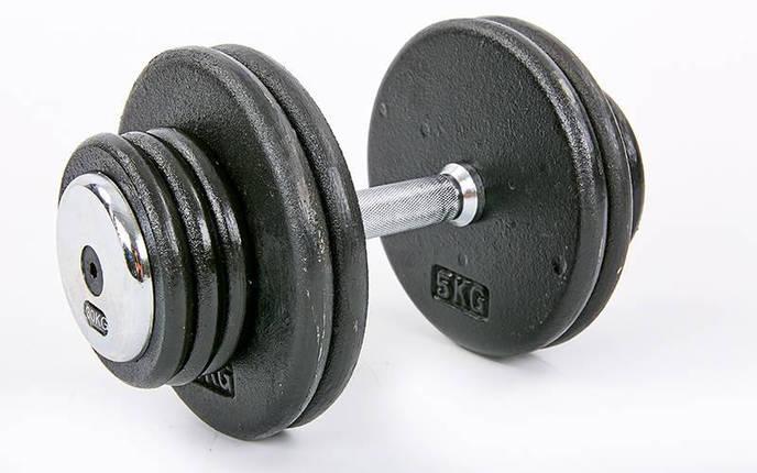 Гантель цельная профессиональная стальная RECORD (1шт) TA-7231-30 30кг (сталь, сталь хромированная, вес 30кг), фото 2
