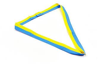 Заготовка медали спортивной с лентой UKRAINE d-5см с украинской символикой C-3242 (1-золото, 2-серебро, 3-бронза), фото 3