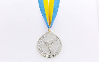 Медаль спортивная с лентой Каратэ d-5см C-7016 (металл, d-5см, 25g, 1-золото, 2-серебро, 3-бронза), фото 2