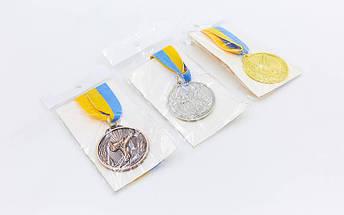 Медаль спортивная с лентой Каратэ d-5см C-7016 (металл, d-5см, 25g, 1-золото, 2-серебро, 3-бронза), фото 3