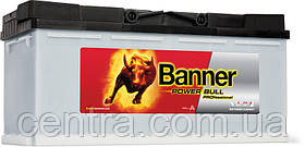 Автомобильный аккумулятор Banner 6СТ-100 Power Bull PROfessional  PRO P100 40