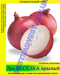 Семена лука «Веселка» 10 кг (мешок)