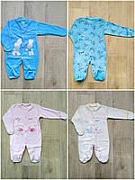 Человечек для новорожденных велюр на кнопках с вышивкой 56,62,68 см, фото 1