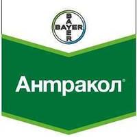 Фунгицид Антракол 70 WP СП, 10 кг, Bayer