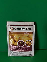 Протруйник для картоплі Селест Топ 20мл (Сингента)