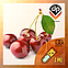Ароматизатор TPA\TFA Black Cherry | Чёрная вишня, фото 2