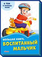 Васильковые книги Большая книга Воспитаный мальчик на русском Ranok SKL11-224018