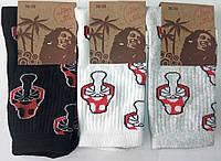 Женские высокие носки. Грибы. Р-Р 36-39. (Розница).