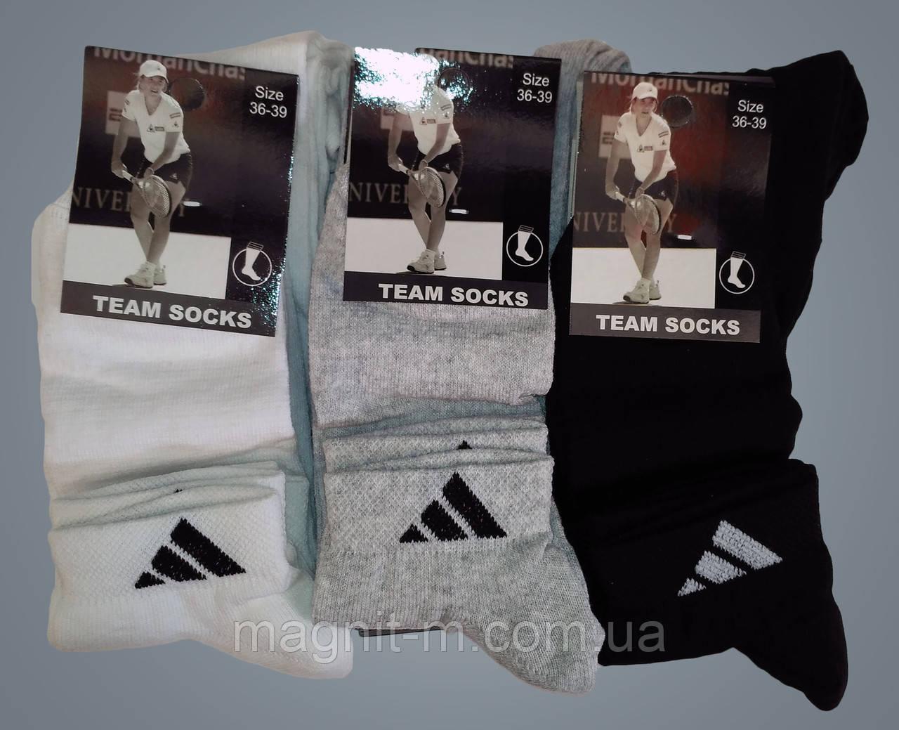 """Носки женские """"Team Socks"""". Спортивные короткие. Хлопок. (Розница)."""