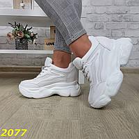 Сникерсы кроссовки на высокой платформе с танкеткой белые, фото 1