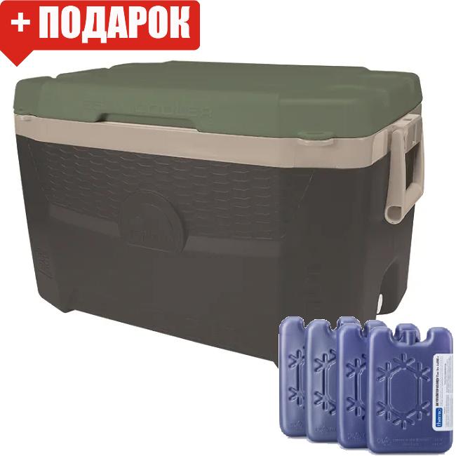 Термобокс Igloo Sportsman Quantum 55 (сумка холодильник, термосумка пластиковая, термо контейнер)