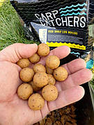 Тонущие бойлы Carp Catchers YESS Shelf Life Boilies 20mm, 1кг