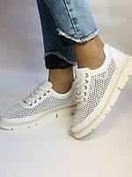Alpino.Туреччина. Жіночі кеди - кросівки. Натуральна шкіра. Білі з перфорацією. Розмір 36,37,38,39,40., фото 4