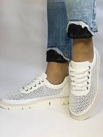 Alpino.Туреччина. Жіночі кеди - кросівки. Натуральна шкіра. Білі з перфорацією. Розмір 36,37,38,39,40., фото 3