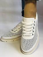 Alpino.Туреччина. Жіночі кеди - кросівки. Натуральна шкіра. Білі з перфорацією. Розмір 36,37,38,39,40., фото 8