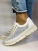 Alpino.Туреччина. Жіночі кеди - кросівки. Натуральна шкіра. Білі з перфорацією. Розмір 36,37,38,39,40., фото 7