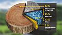 ЦСП плита BZS Цементно-стружкова плита CSP Білорусь 3200х1200х16 мм, фото 8