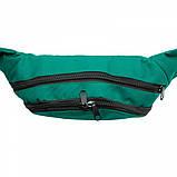 Бананка, сумка на пояс, сумка через плече TIGER Зелений, фото 4